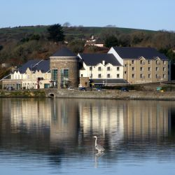 Angel Readings at Celtic Ross Hotel – Rosscarberry – June 13th – 11AM – 5PM